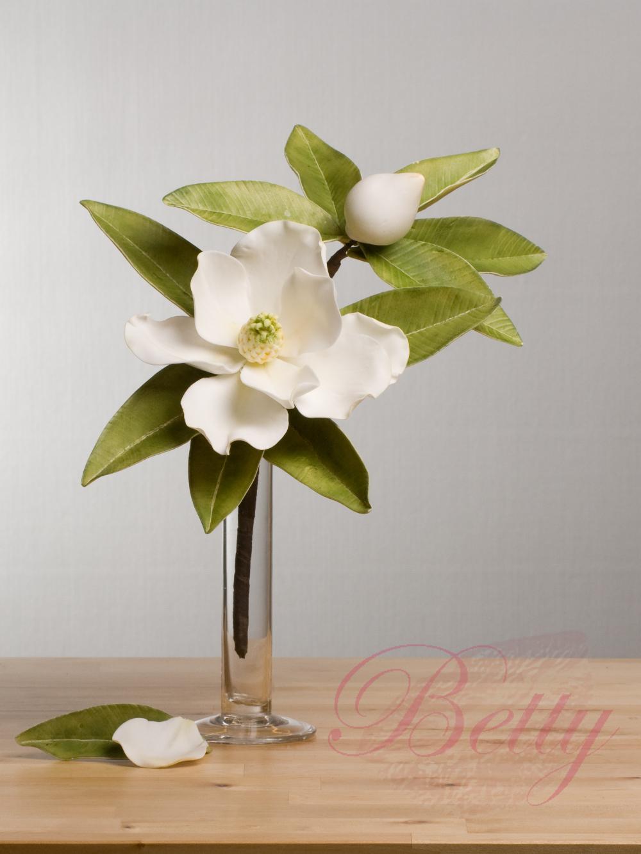 magnolie_logo