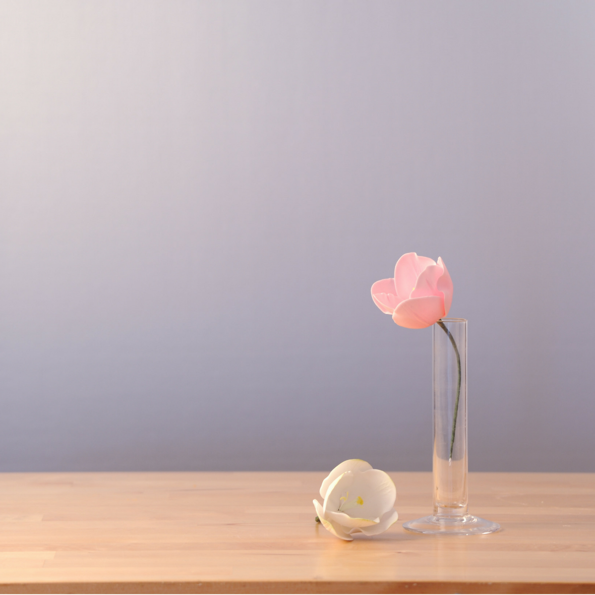 Anleitung Tulpen aus Blütenpaste